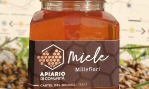 Honey in Molise: the community apiary of Castel Del Giudice