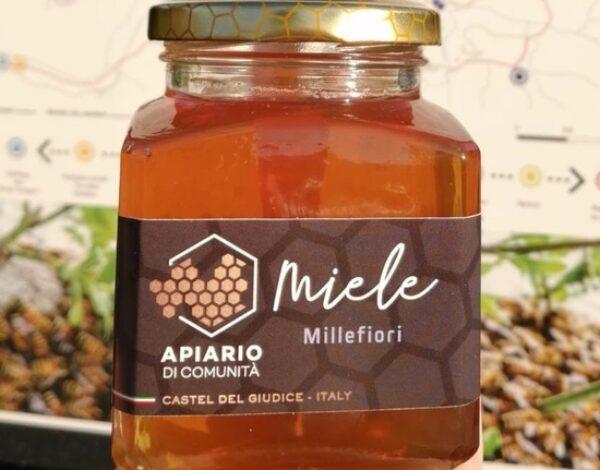 Miele molisano: l'apiario di comunità di Castel Del Giudice