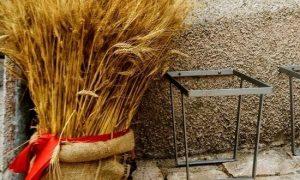 """Il Molise """"d'oro"""", tra spighe e chicchi di grano"""