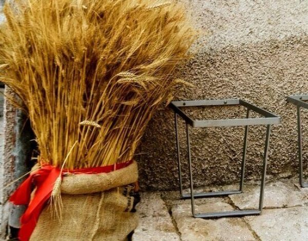 """The """"golden"""" Molise, between ears and grains of wheat"""